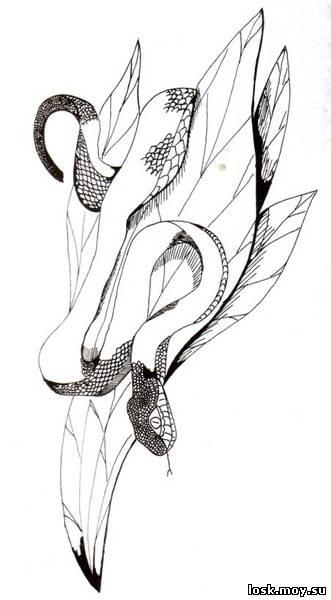Цветы - Схемы вышивки гладью -